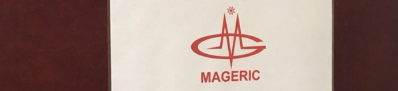 mageric-market-3